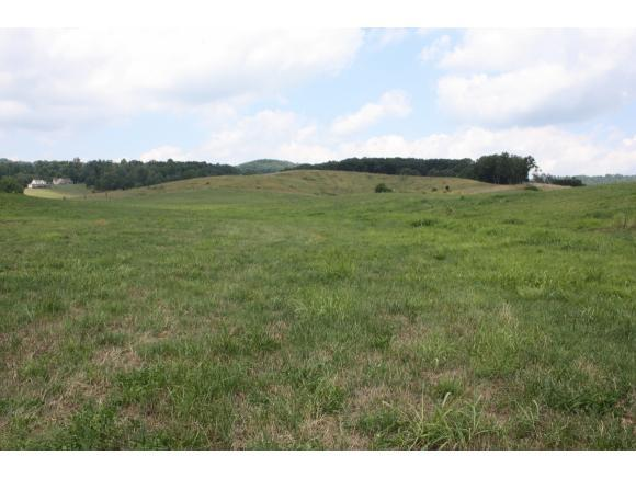 TBD Reedy Creek, Lot 7, Bristol, VA 24201 (MLS #402598) :: Highlands Realty, Inc.