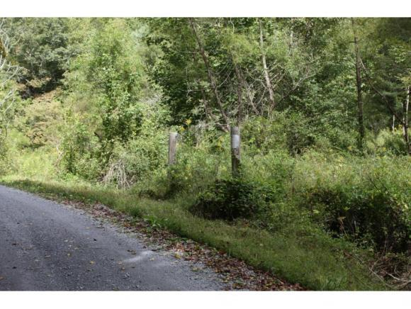 TBD Lone Star Road Lot 7, Bristol, VA 24202 (MLS #402664) :: Highlands Realty, Inc.
