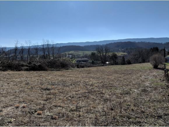 TBD Old Fincastle Rd, Lebanon, VA 24266 (MLS #402772) :: Highlands Realty, Inc.