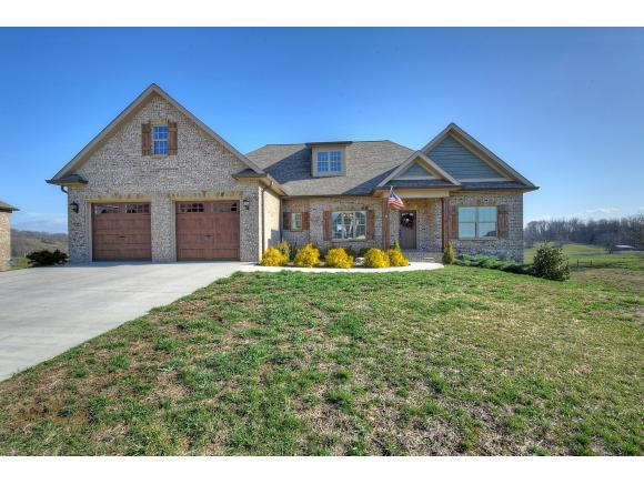 256 Laurel Canyon, Johnson City, TN 37615 (MLS #402788) :: Highlands Realty, Inc.