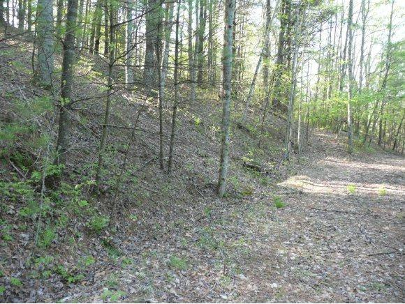 143 Water Tank Road, Butler, TN 37640 (MLS #402823) :: Highlands Realty, Inc.