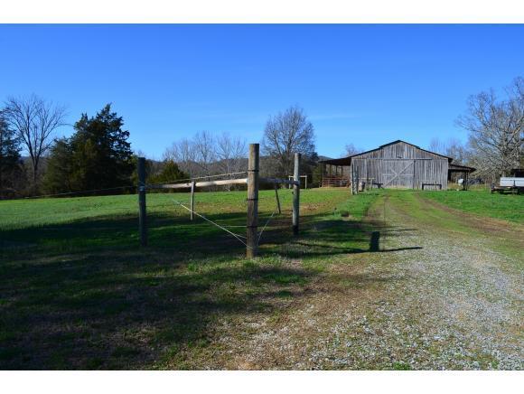230 Cw Kite Lane, Mosheim, TN 37818 (MLS #403149) :: Conservus Real Estate Group