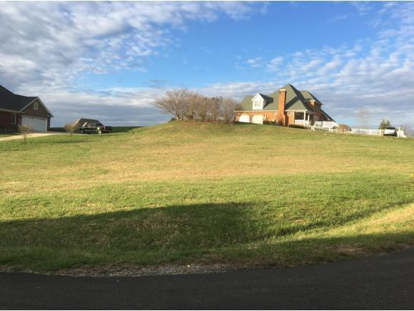 TBD Kestrel Drive, Bristol, VA 24202 (MLS #403393) :: Griffin Home Group