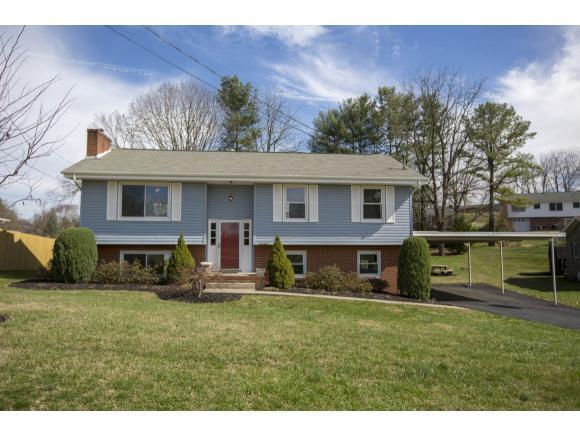 14 Longdale, Bristol, VA 24201 (MLS #403440) :: Highlands Realty, Inc.