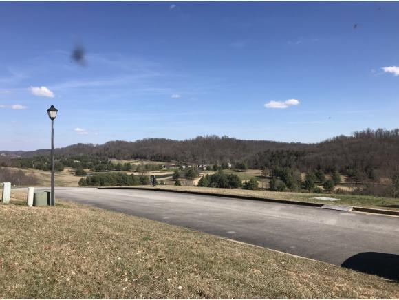 0 Chimney Top Lane, Chuckey, TN 37641 (MLS #403495) :: Highlands Realty, Inc.