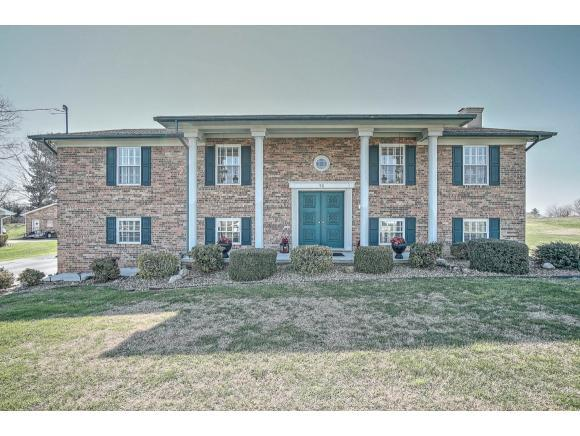 98 Kelly Drive, Greeneville, TN 37745 (MLS #403715) :: Griffin Home Group