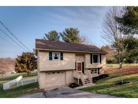 1009 Surmont Court, Kingsport, TN 37660 (MLS #403832) :: Highlands Realty, Inc.