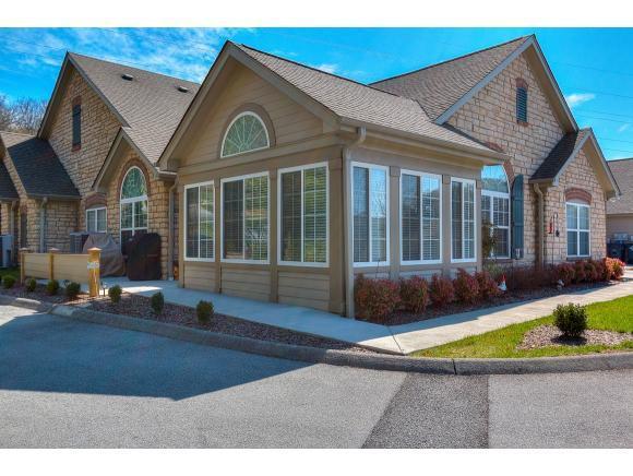 1727 Skyland Falls Court -, Kingsport, TN 37664 (MLS #403847) :: Griffin Home Group