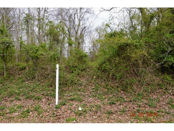 Lot 6&7 West Stone Drive, Kingsport, TN 37660 (MLS #403954) :: Conservus Real Estate Group