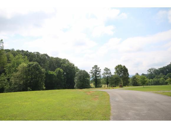 277 Allenwood Drive, Surgoinsville, TN 37873 (MLS #404065) :: Conservus Real Estate Group