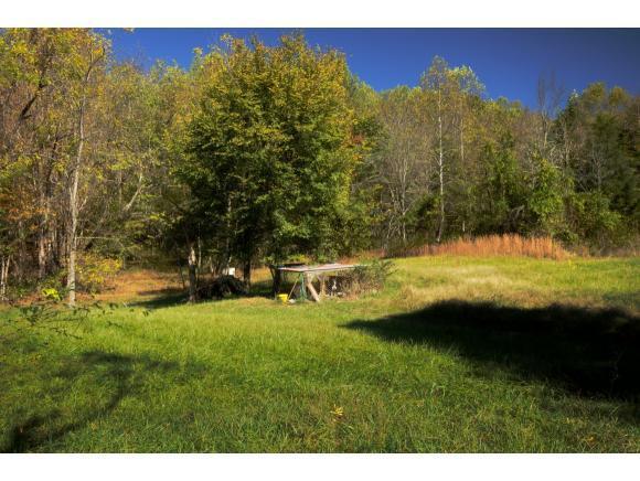 1050 Highway 394, Blountville, TN 37617 (MLS #404202) :: Highlands Realty, Inc.