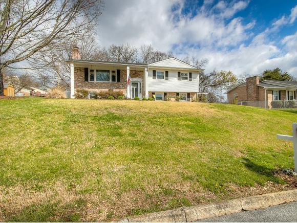 2044 Louita Drive, Kingsport, TN 37660 (MLS #404203) :: Highlands Realty, Inc.