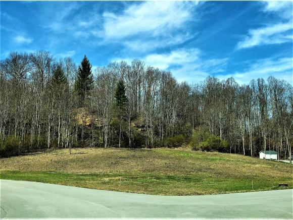 TBD Mapleview Drive, Wise, VA 24293 (MLS #404215) :: Highlands Realty, Inc.