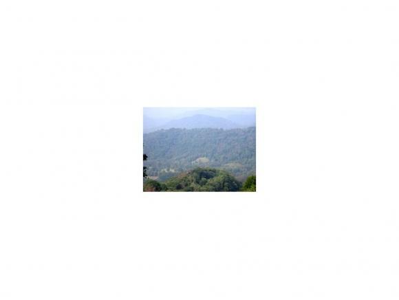 TBD Sylvan Way, Roan Mountain, TN 37687 (MLS #404257) :: Highlands Realty, Inc.