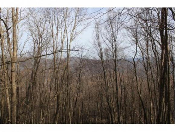 TBD Sylvan Way, Roan Mountain, TN 37687 (MLS #404258) :: Highlands Realty, Inc.