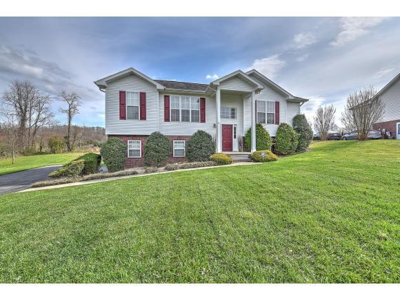 317 Katie Court, Jonesborough, TN 37659 (MLS #404338) :: Highlands Realty, Inc.