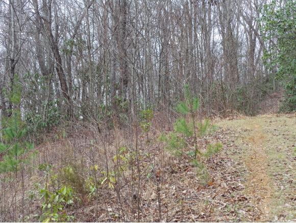 LOT 10 Pfeiffer Ridge Road, Johnson City, TN 37601 (MLS #404388) :: Highlands Realty, Inc.