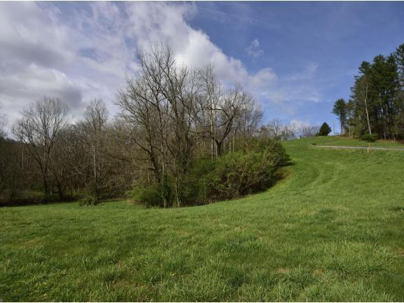 1001 Cedar Side Place, Bristol, TN 37620 (MLS #404730) :: Griffin Home Group