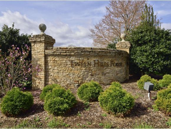 1009 Cedar Side Place, Bristol, TN 37620 (MLS #404732) :: Griffin Home Group