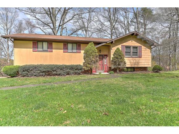 139 Kings Mountain Dr., Church Hill, TN 37642 (MLS #404748) :: Highlands Realty, Inc.