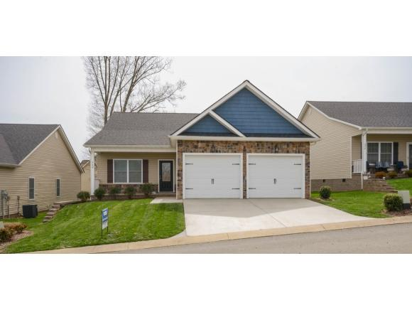 249 Piper Glen, Gray, TN 37615 (MLS #404845) :: Griffin Home Group