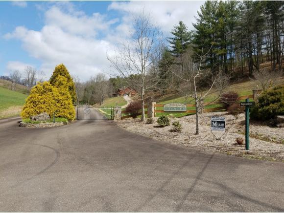 TBD Johnson Hollow, Mountain City, TN 37683 (MLS #404936) :: Highlands Realty, Inc.