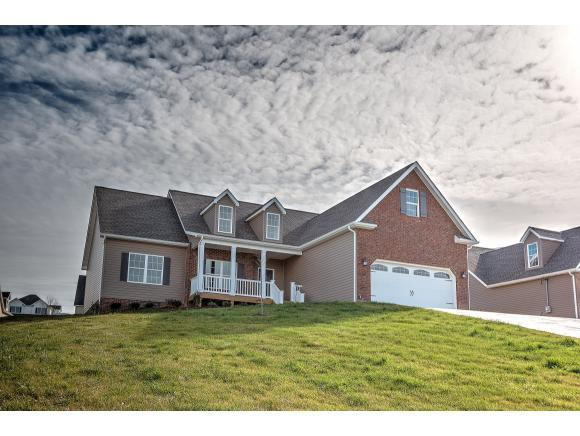 113 Bend Ct., Gray, TN 37615 (MLS #405073) :: Griffin Home Group