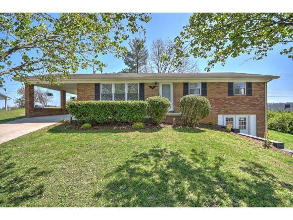 55 Britton Ave., Greeneville, TN 37743 (MLS #405101) :: Highlands Realty, Inc.