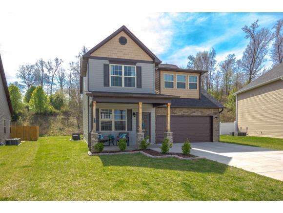 1195 Hammett Road, Johnson City, TN 37615 (MLS #405122) :: Highlands Realty, Inc.