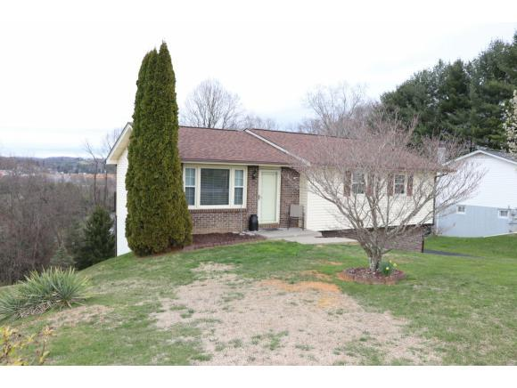 219 Ashley Drive, Bristol, VA 24201 (MLS #405153) :: Highlands Realty, Inc.