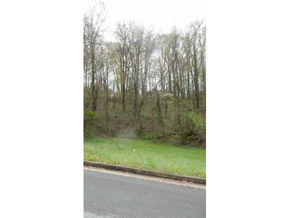 126 Maple Crest, Greeneville, TN 37743 (MLS #405229) :: Highlands Realty, Inc.