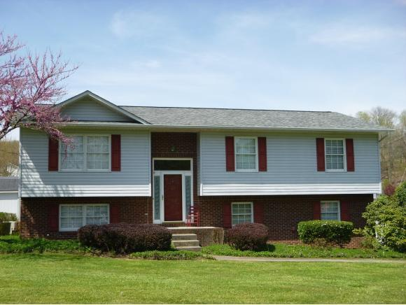 150 Valley Crest Drive, Mt. Carmel, TN 37645 (MLS #405246) :: Griffin Home Group