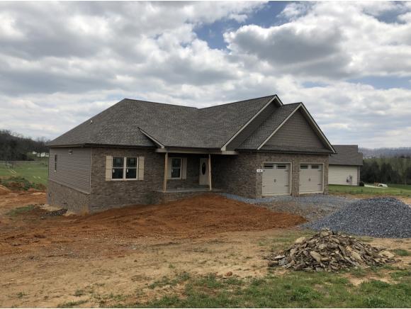 1341 Peaceful Dr, Jonesborough, TN 37659 (MLS #405282) :: Conservus Real Estate Group