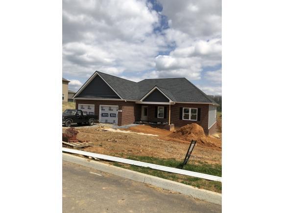 1317 Peaceful Dr, Jonesborough, TN 37659 (MLS #405283) :: Conservus Real Estate Group