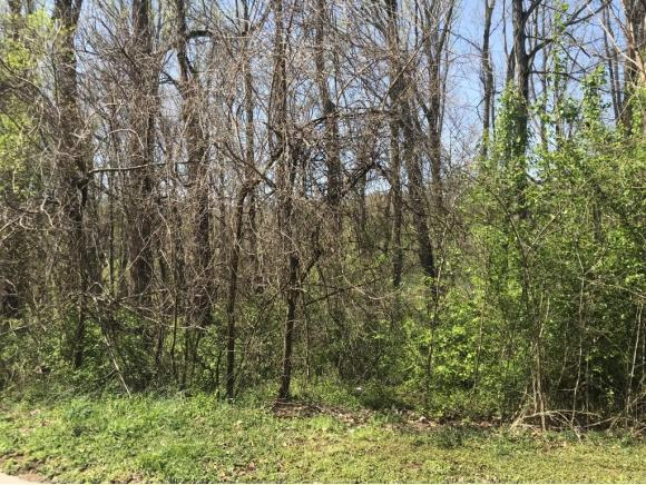 T.B.D. Whitson Drive Lot 11, Elizabethton, TN 37643 (MLS #405369) :: Griffin Home Group