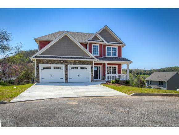 1616 Chelsea Court, Kingsport, TN 37663 (MLS #405397) :: Conservus Real Estate Group