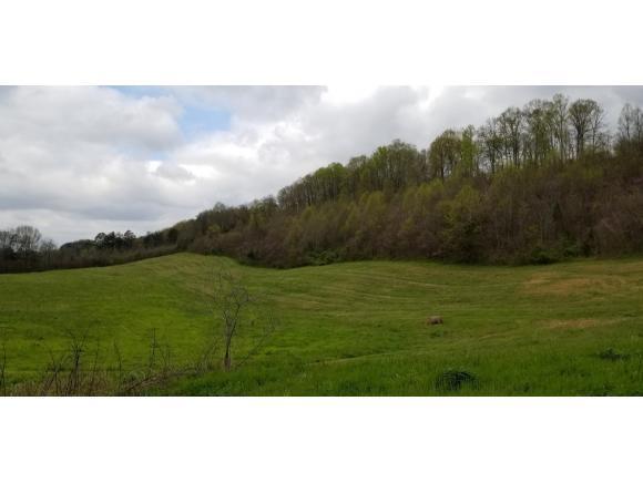 139 Tucker Hill Road, Rogersville, TN 37857 (MLS #405427) :: Griffin Home Group