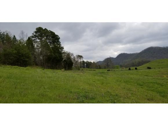 TR 2 Tucker Hill Road, Rogersville, TN 37857 (MLS #405450) :: Griffin Home Group