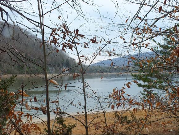 177 Walnut Bend Dr, Whitesburg, TN 37891 (MLS #405490) :: Highlands Realty, Inc.