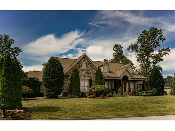 1184 Cliffview Circle, Gray, TN 37615 (MLS #405497) :: Griffin Home Group