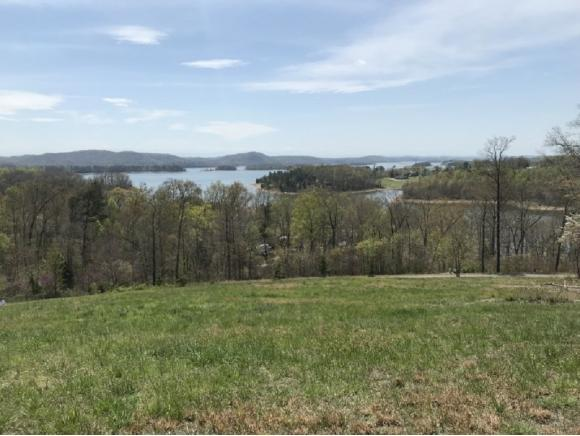 177 Shiloh Springs Road, Rutledge, TN 37861 (MLS #405501) :: Griffin Home Group
