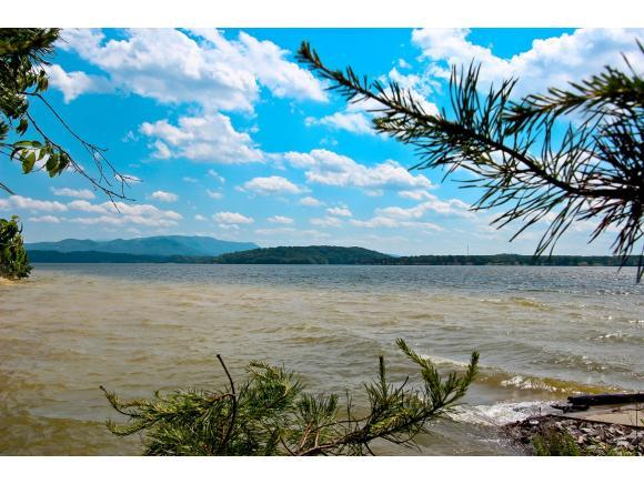 3.12 Ac Kammann & Travelers Cove, Baneberry, TN 37890 (MLS #405576) :: Highlands Realty, Inc.