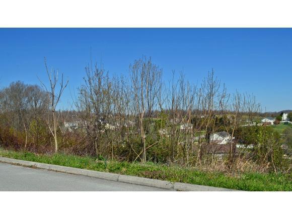 202 Alfalfa Ln, Jonesborough, TN 37659 (MLS #405628) :: Griffin Home Group