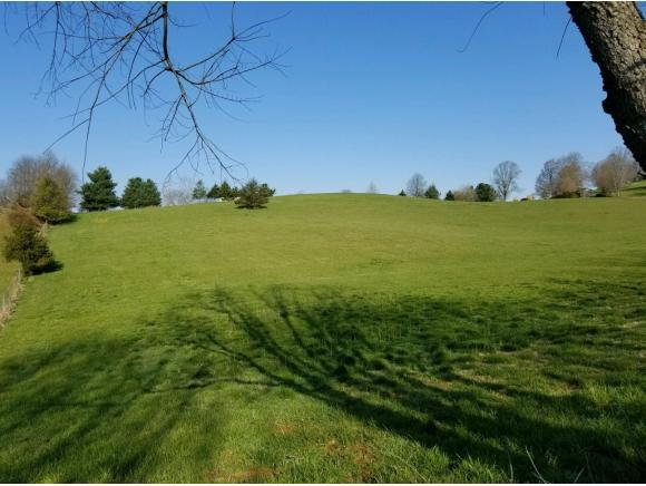 TBD Branch Street, Abingdon, VA 24210 (MLS #405630) :: Highlands Realty, Inc.