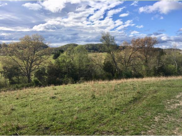 TBD Highway 11E, Chuckey, TN 37641 (MLS #405632) :: Highlands Realty, Inc.