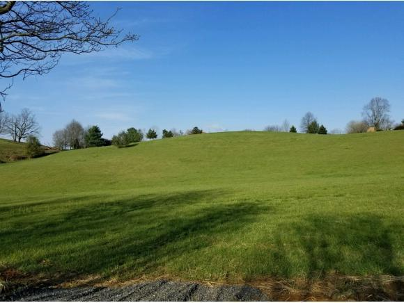 TBD Branch Street, Abingdon, VA 24210 (MLS #405633) :: Highlands Realty, Inc.