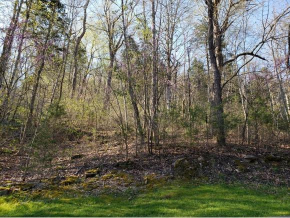 Lot 128 Eagles Ridge, Tazewell, TN 37879 (MLS #405674) :: Highlands Realty, Inc.