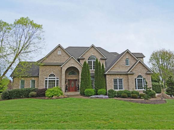 504 Magnolia Ridge Drive, Jonesborough, TN 37659 (MLS #405756) :: Highlands Realty, Inc.