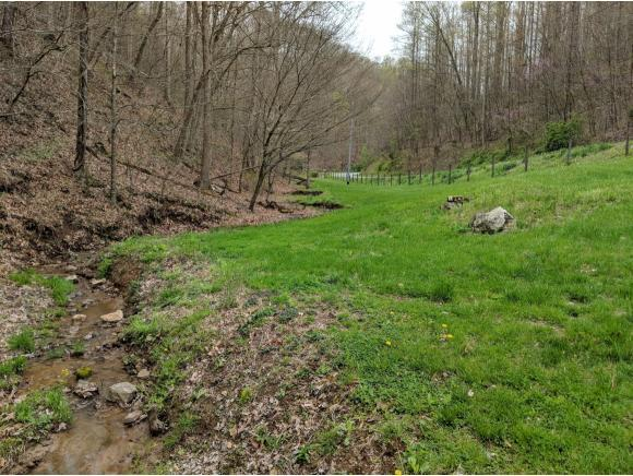 TBD Grindstone Branch Rd, Bristol, VA 24202 (MLS #405765) :: Highlands Realty, Inc.