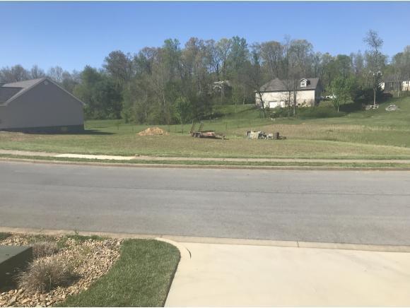 425 Glen Oaks, Johnson City, TN 37615 (MLS #405971) :: Highlands Realty, Inc.
